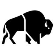 Buffalo Systems logo
