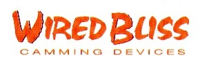 Wired Bliss logo